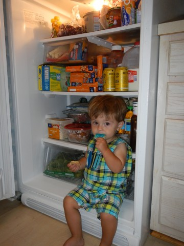 Trey in the Fridge