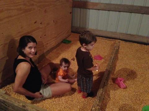 Family Sized Corn Box